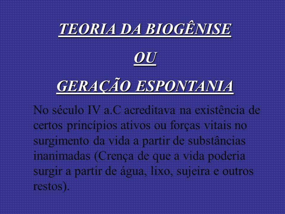TEORIA DA BIOGÊNISE OU GERAÇÃO ESPONTANIA
