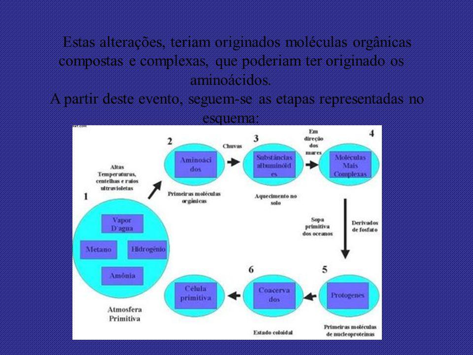 A partir deste evento, seguem-se as etapas representadas no esquema:
