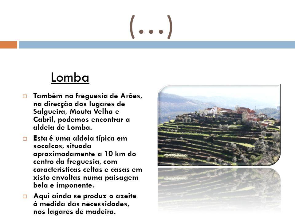 (…) Lomba. Também na freguesia de Arões, na direcção dos lugares de Salgueira, Mouta Velha e Cabril, podemos encontrar a aldeia de Lomba.