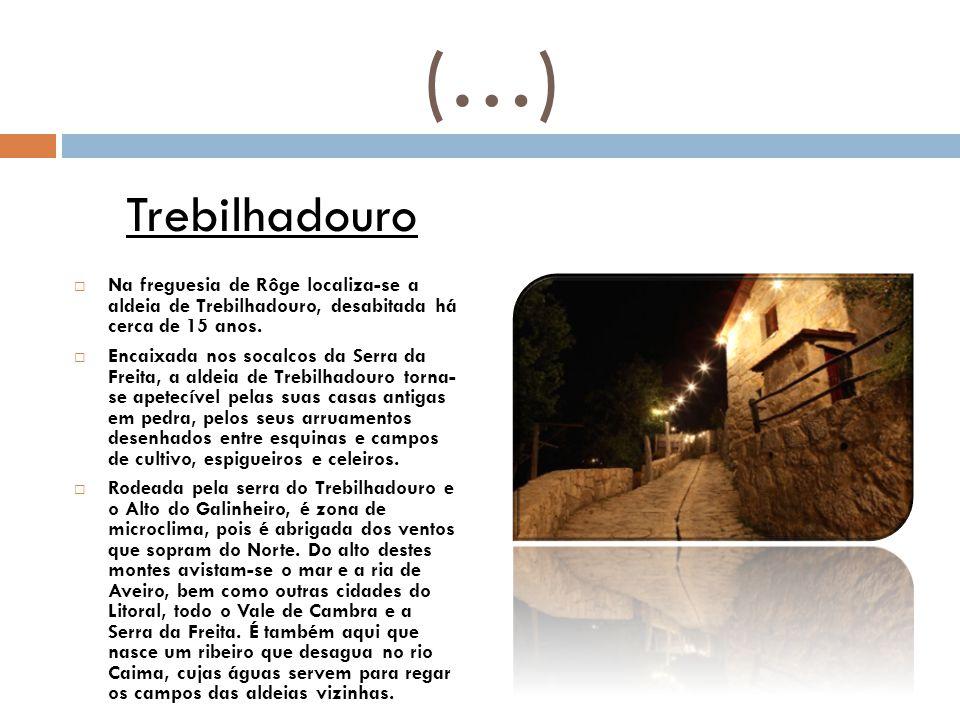 (…) Trebilhadouro. Na freguesia de Rôge localiza-se a aldeia de Trebilhadouro, desabitada há cerca de 15 anos.