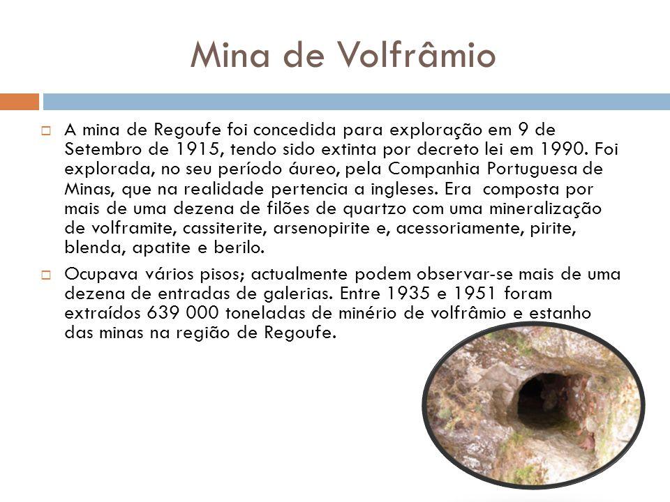 Mina de Volfrâmio