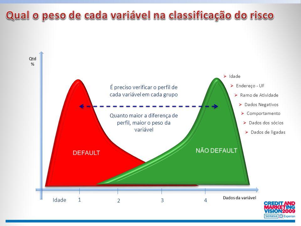 Qual o peso de cada variável na classificação do risco
