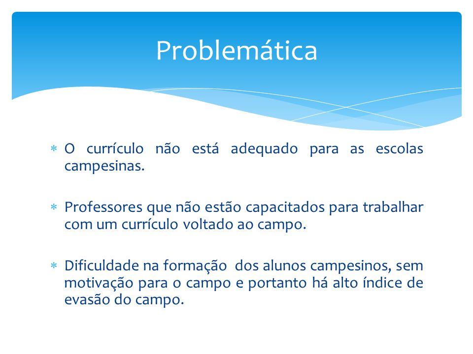 Problemática O currículo não está adequado para as escolas campesinas.