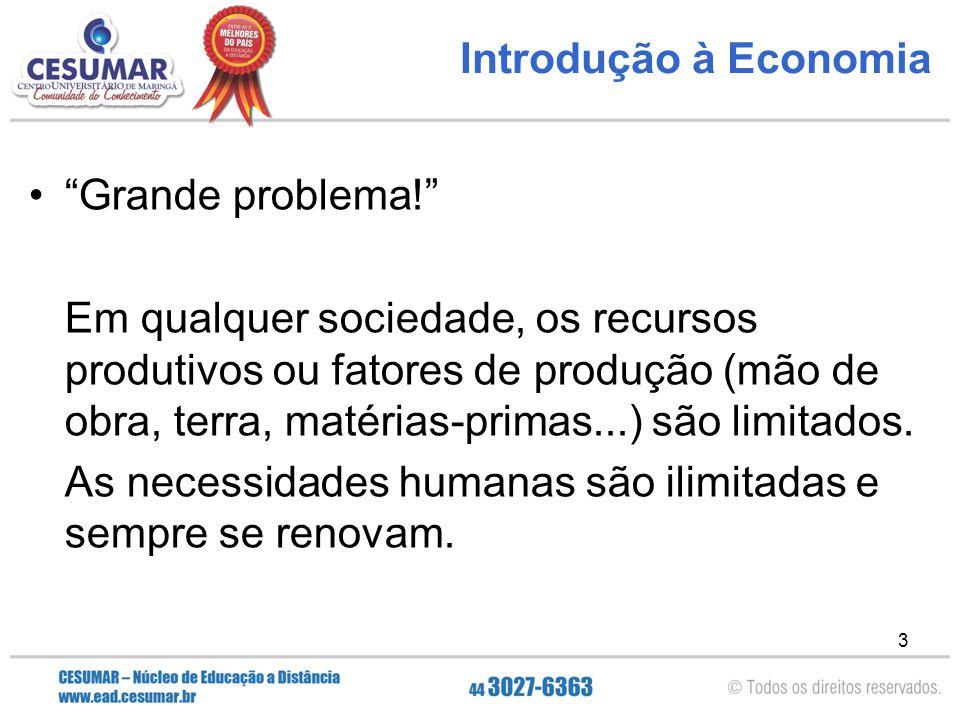 Introdução à Economia Grande problema!