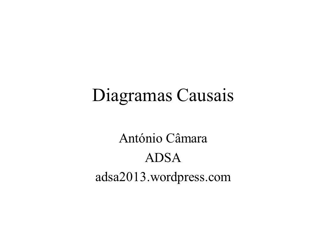 António Câmara ADSA adsa2013.wordpress.com