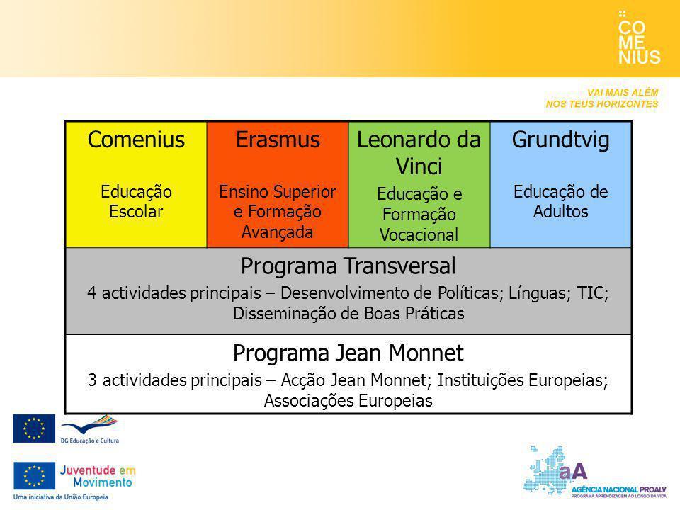 Comenius Erasmus Leonardo da Vinci Grundtvig Programa Transversal