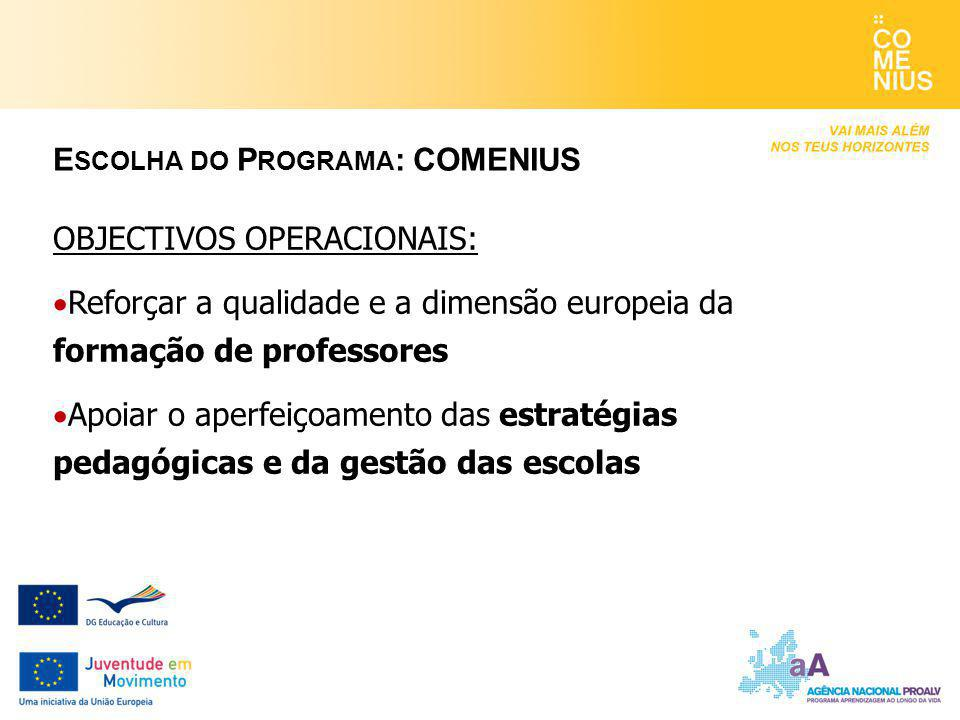 Escolha do Programa: COMENIUS