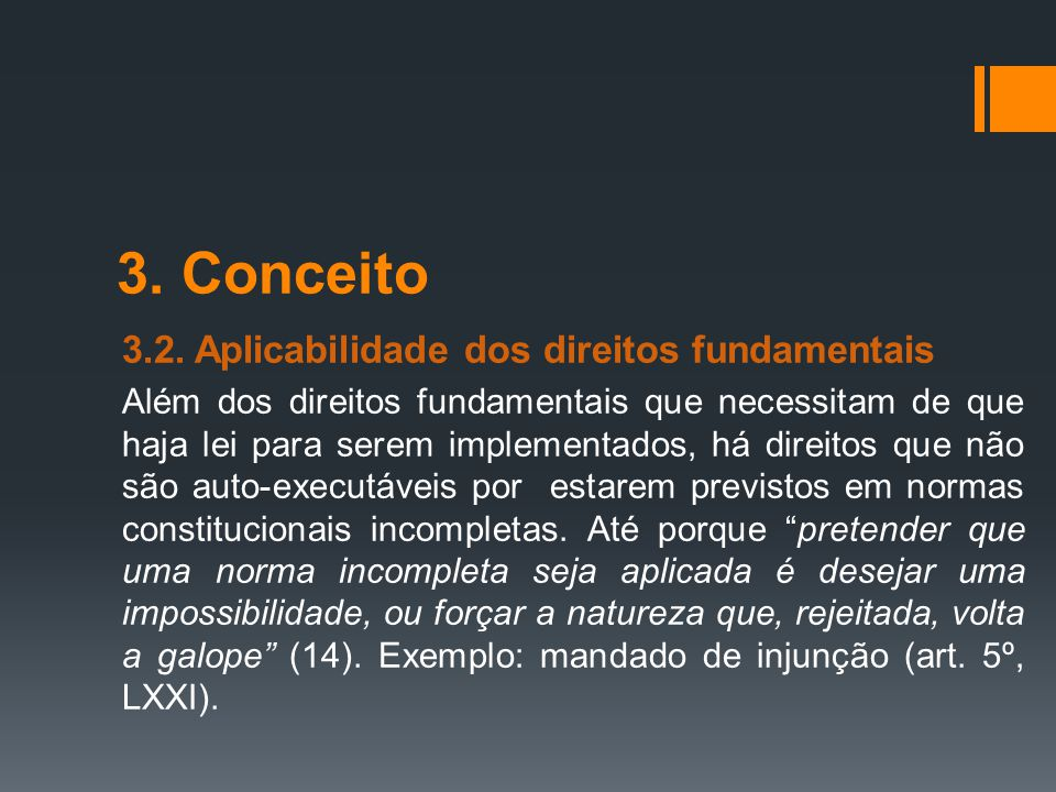 3. Conceito 3.2. Aplicabilidade dos direitos fundamentais