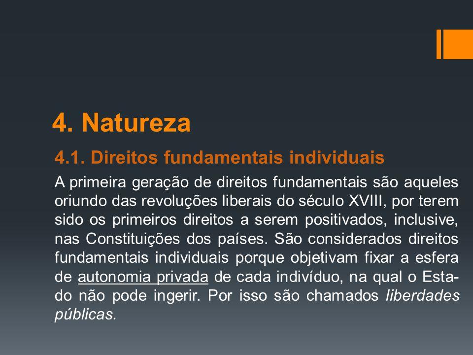 4. Natureza 4.1. Direitos fundamentais individuais