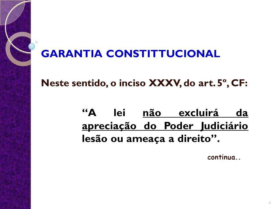 GARANTIA CONSTITTUCIONAL