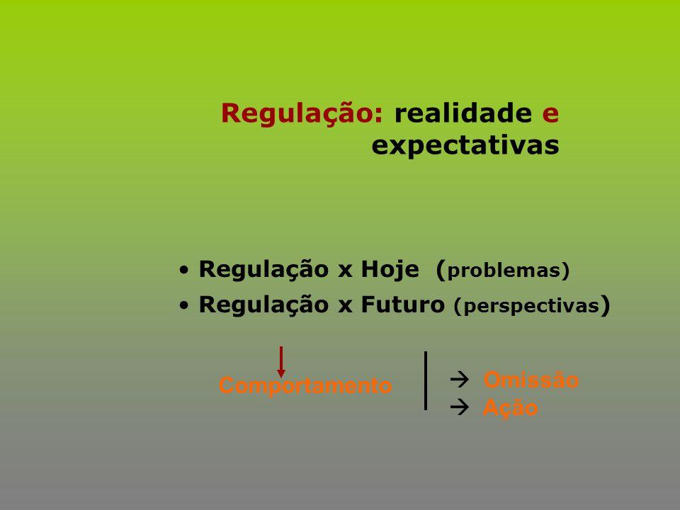 Regulação: realidade e expectativas
