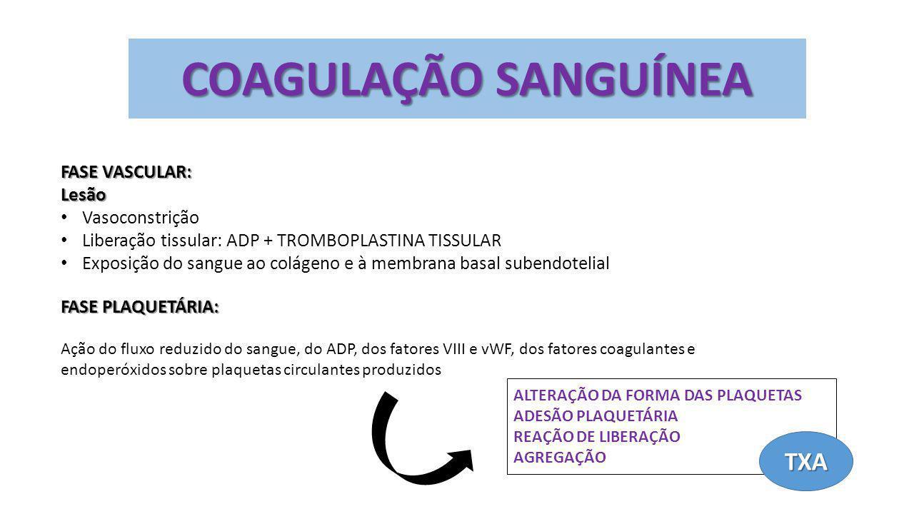 COAGULAÇÃO SANGUÍNEA TXA FASE VASCULAR: Lesão Vasoconstrição