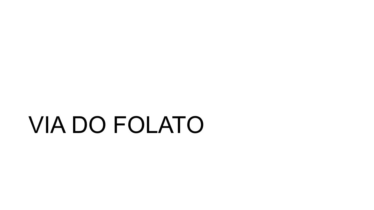 VIA DO FOLATO