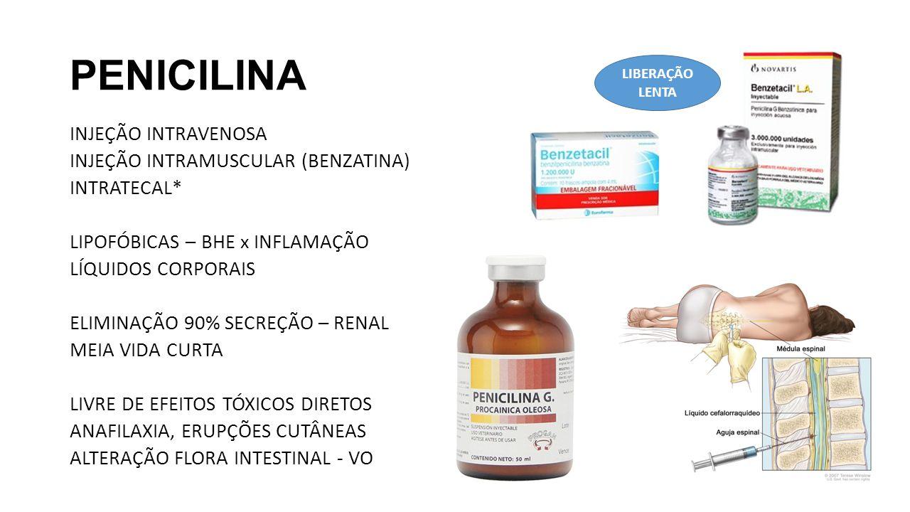 PENICILINA LIBERAÇÃO LENTA.