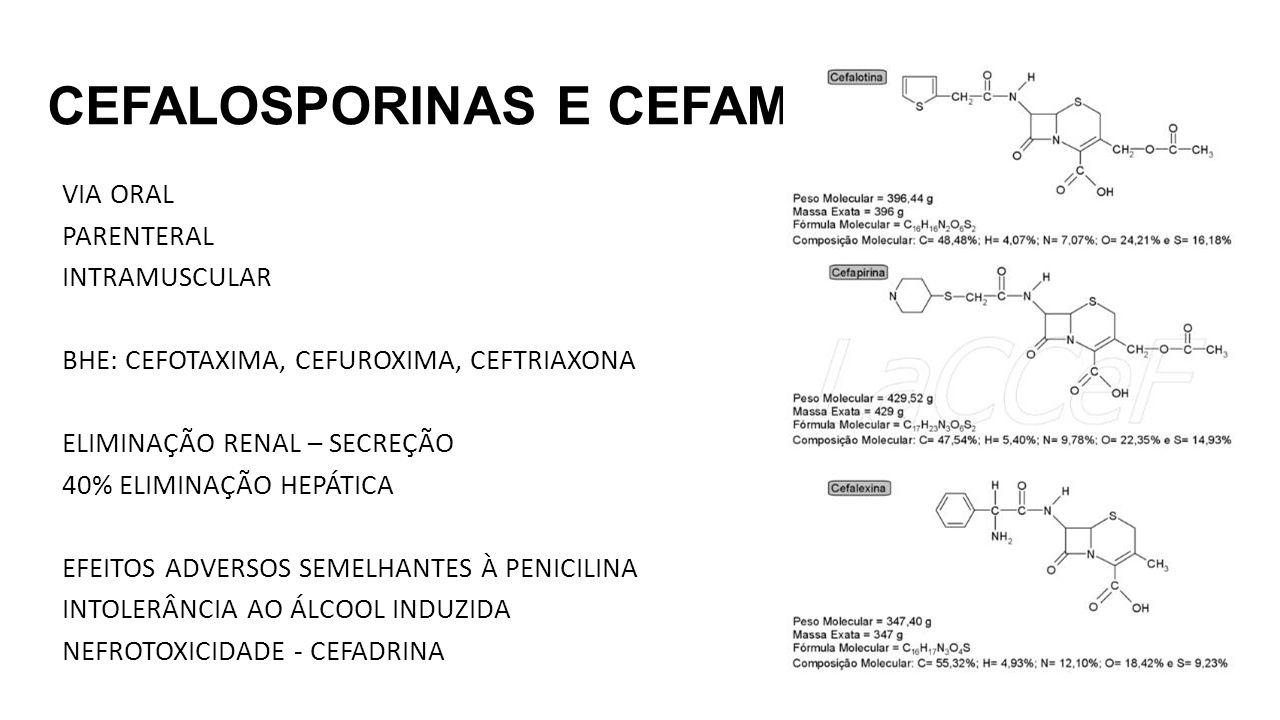 CEFALOSPORINAS E CEFAMICINAS