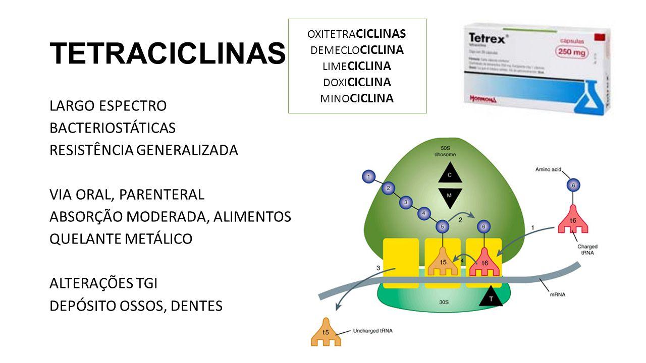 TETRACICLINAS OXITETRACICLINAS. DEMECLOCICLINA. LIMECICLINA. DOXICICLINA. MINOCICLINA.