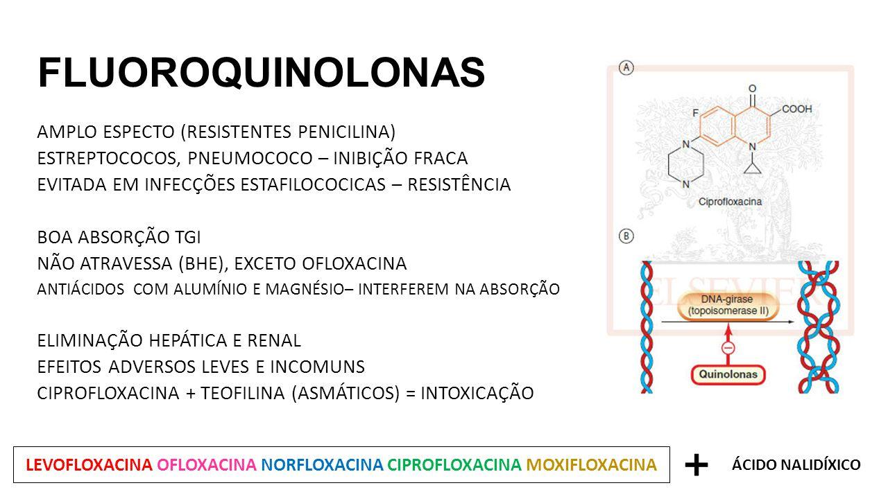 LEVOFLOXACINA OFLOXACINA NORFLOXACINA CIPROFLOXACINA MOXIFLOXACINA