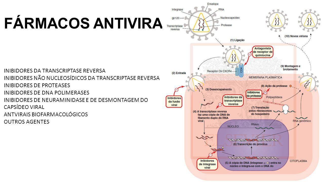 FÁRMACOS ANTIVIRAIS INIBIDORES DA TRANSCRIPTASE REVERSA