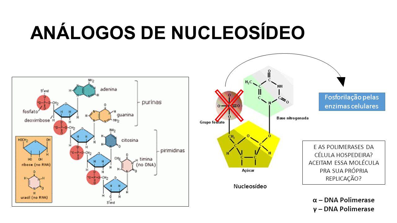 ANÁLOGOS DE NUCLEOSÍDEO