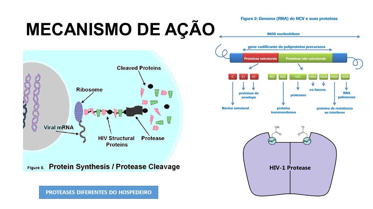 PROTEASES DIFERENTES DO HOSPEDEIRO