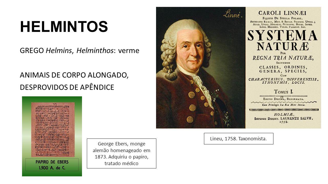 HELMINTOS GREGO Helmins, Helminthos: verme ANIMAIS DE CORPO ALONGADO, DESPROVIDOS DE APÊNDICE Lineu, 1758. Taxonomista.