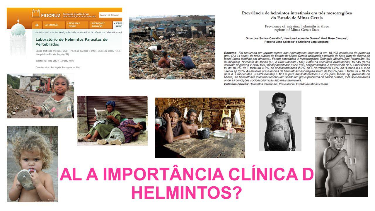 QUAL A IMPORTÂNCIA CLÍNICA DOS HELMINTOS