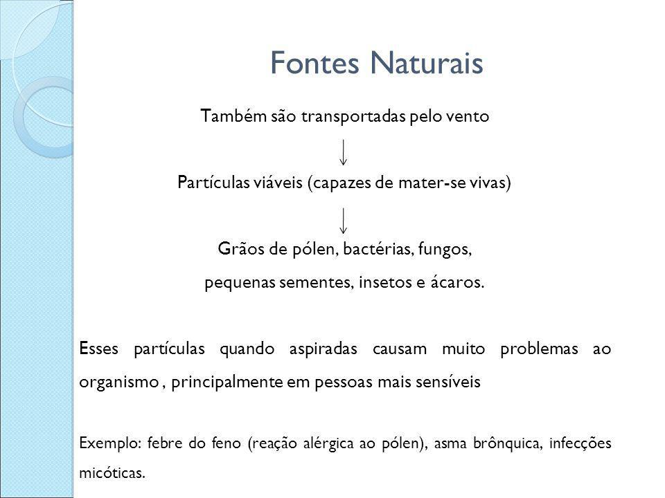 Fontes Naturais Também são transportadas pelo vento