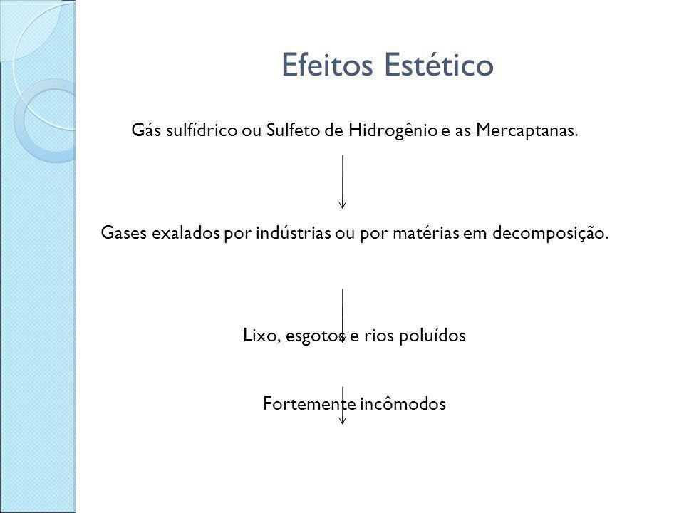 Efeitos Estético