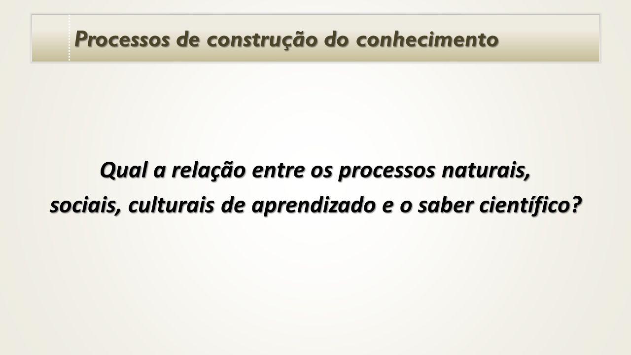 Processos de construção do conhecimento