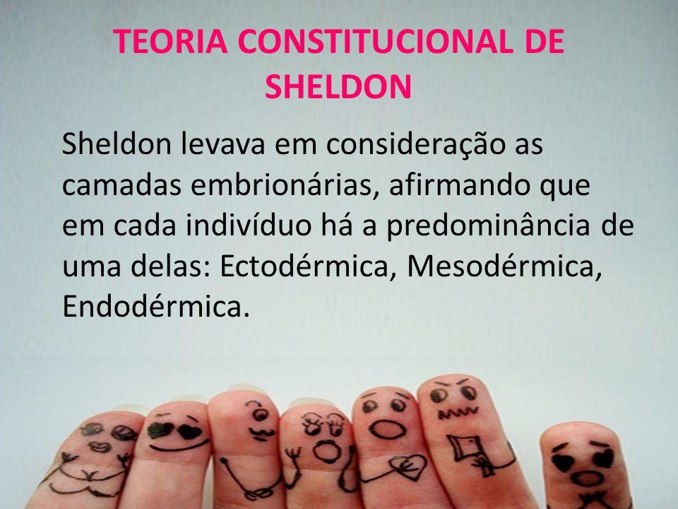 TEORIA CONSTITUCIONAL DE SHELDON