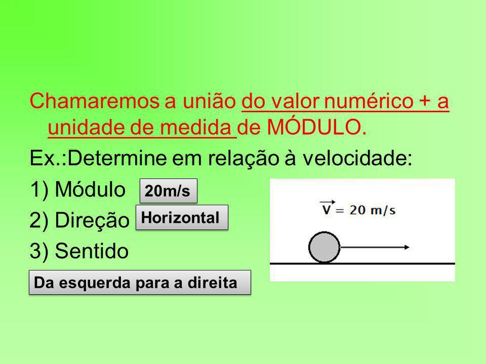 Chamaremos a união do valor numérico + a unidade de medida de MÓDULO