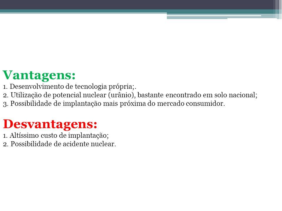 Vantagens: Desvantagens: 1. Desenvolvimento de tecnologia própria;.