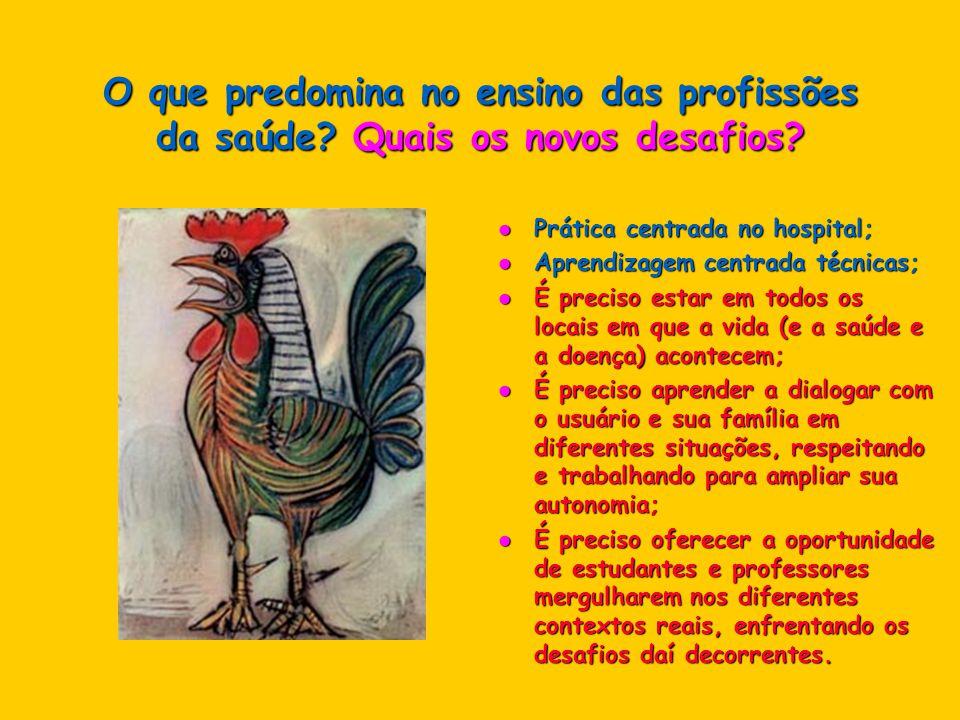 O que predomina no ensino das profissões da saúde