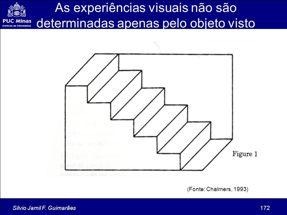 As experiências visuais não são determinadas apenas pelo objeto visto