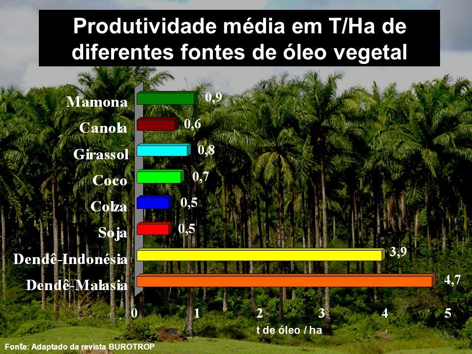 Produtividade média em T/Ha de diferentes fontes de óleo vegetal
