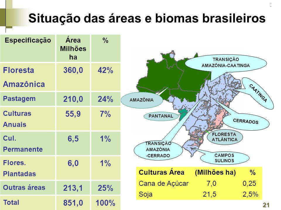 Situação das áreas e biomas brasileiros