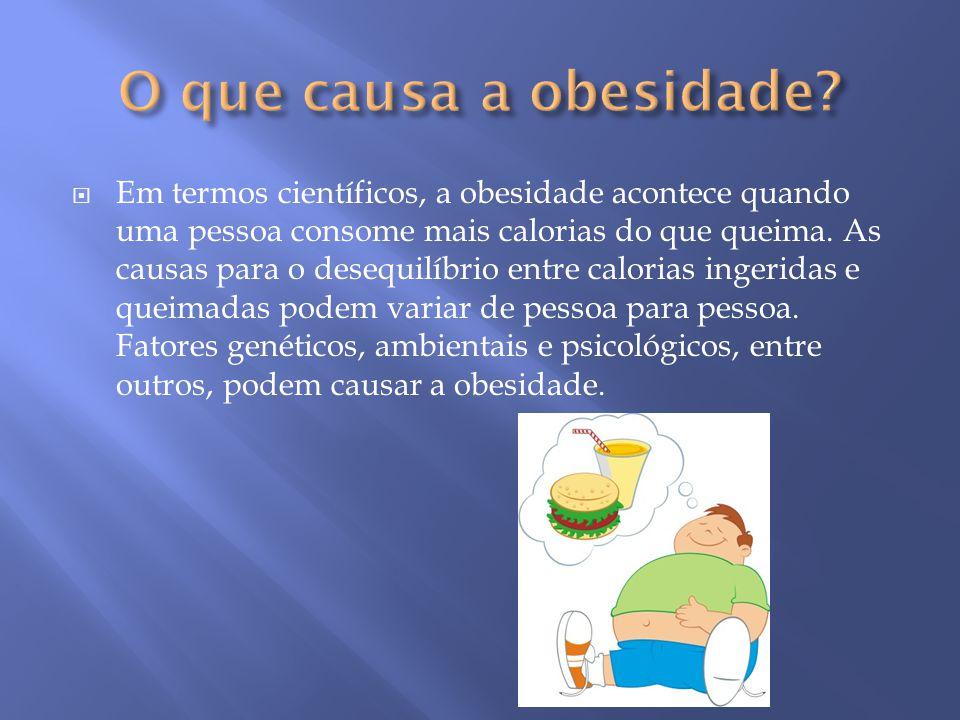 O que causa a obesidade