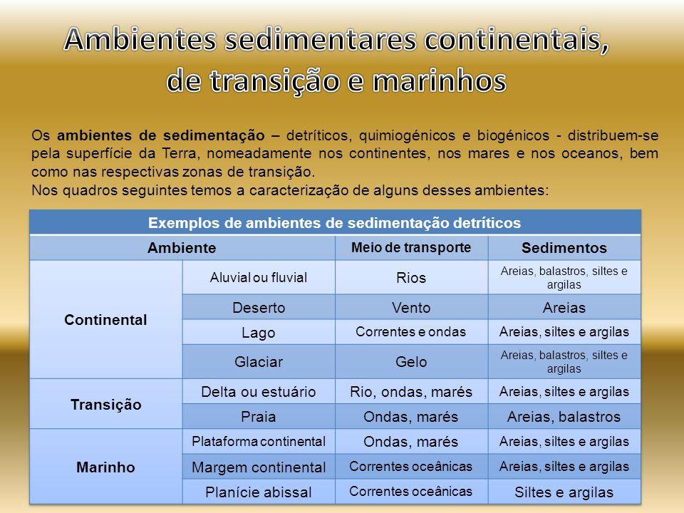 Ambientes sedimentares continentais, de transição e marinhos
