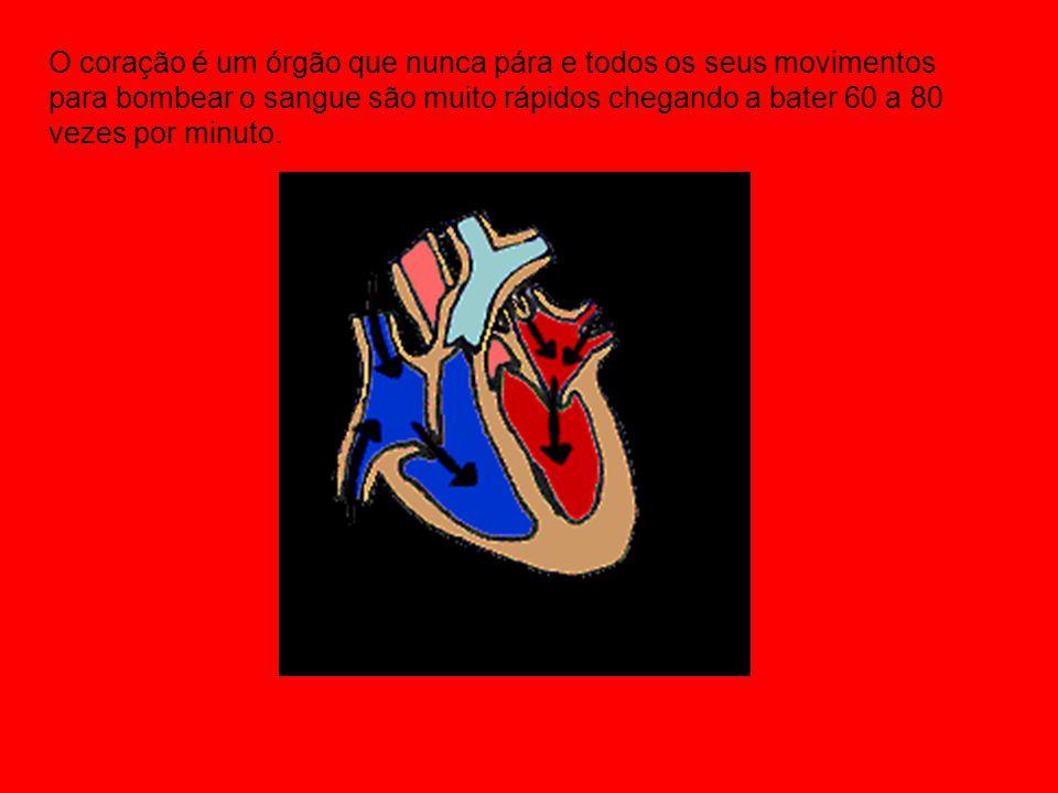 O coração é um órgão que nunca pára e todos os seus movimentos para bombear o sangue são muito rápidos chegando a bater 60 a 80 vezes por minuto.