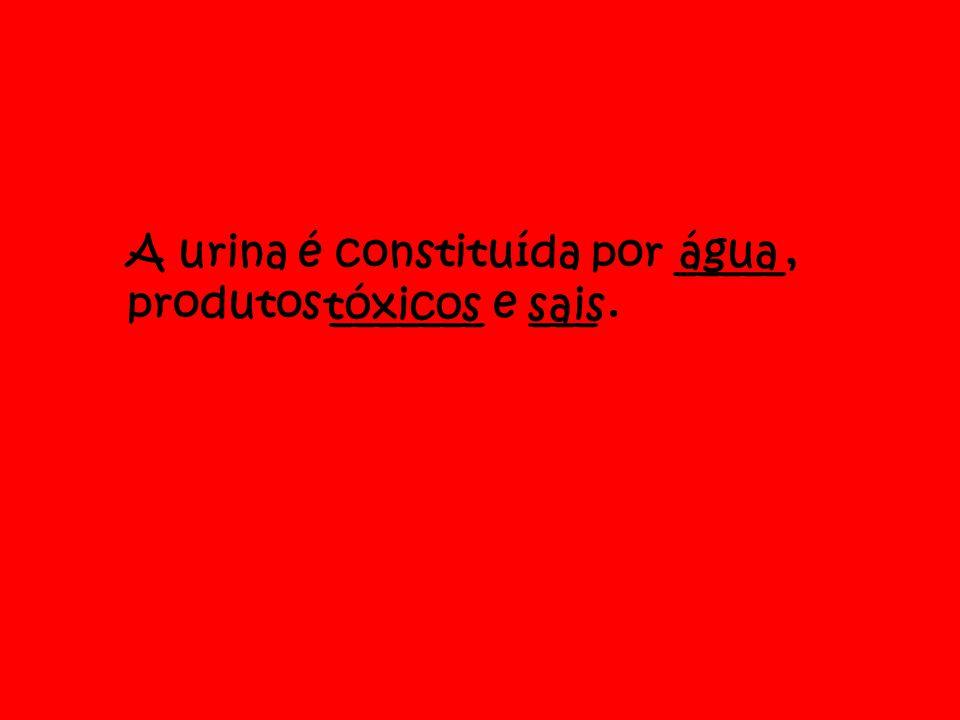 A urina é constituída por _____, produtos _______ e ___ .
