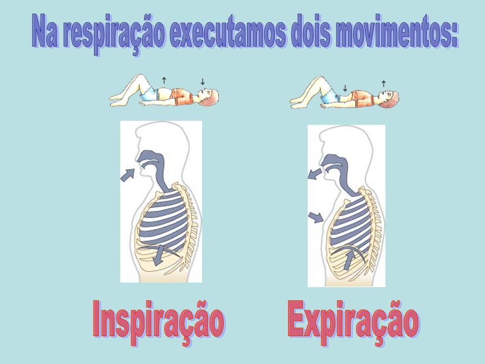 Na respiração executamos dois movimentos: