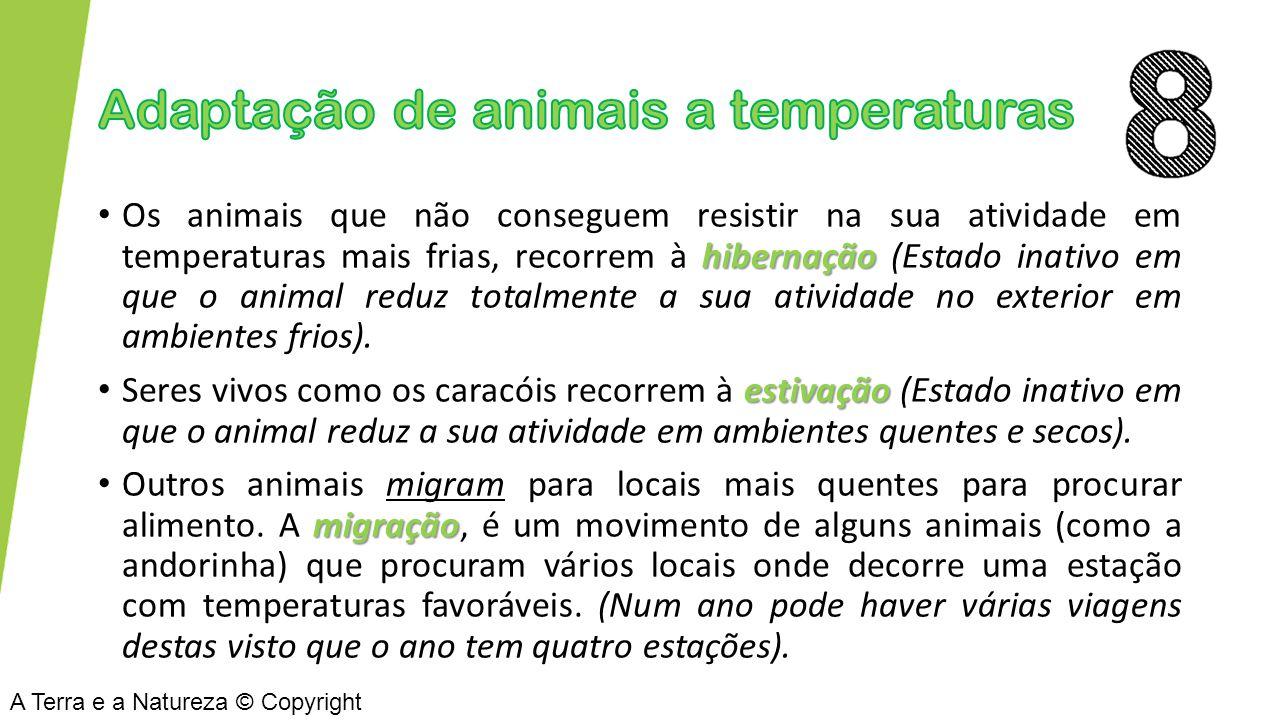 Adaptação de animais a temperaturas