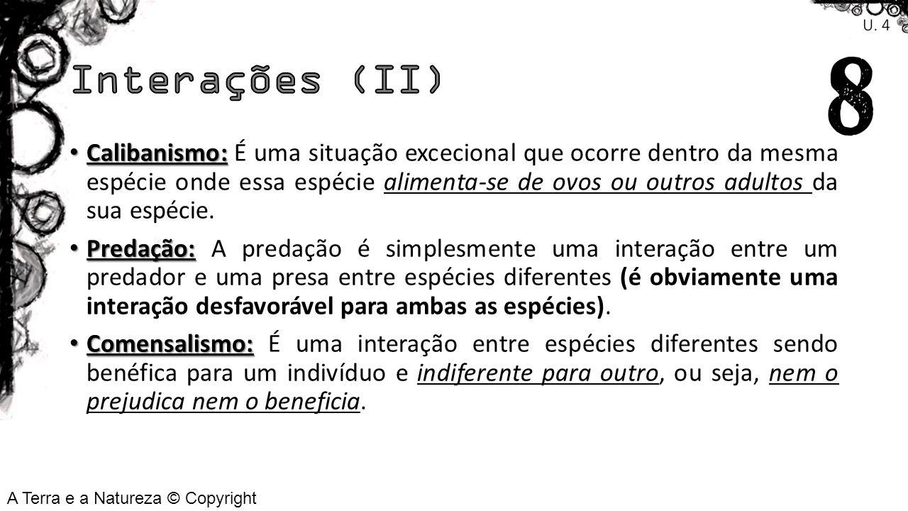 Interações (II)