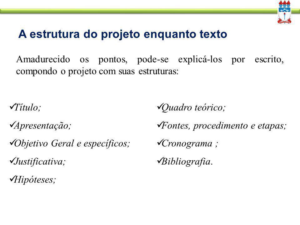 A estrutura do projeto enquanto texto