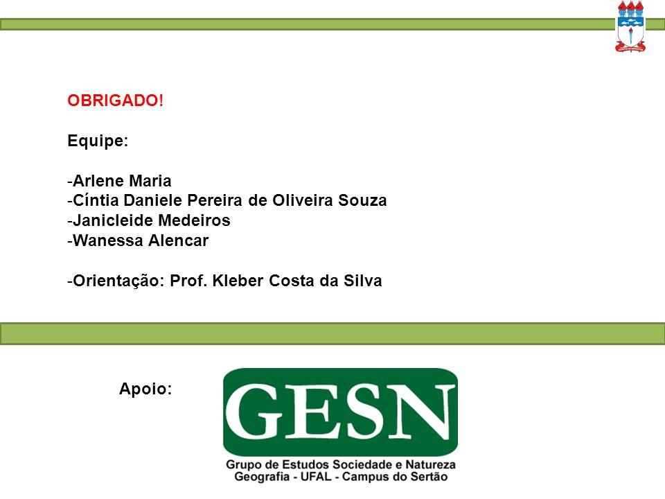 OBRIGADO! Equipe: Arlene Maria. Cíntia Daniele Pereira de Oliveira Souza. Janicleide Medeiros. Wanessa Alencar.