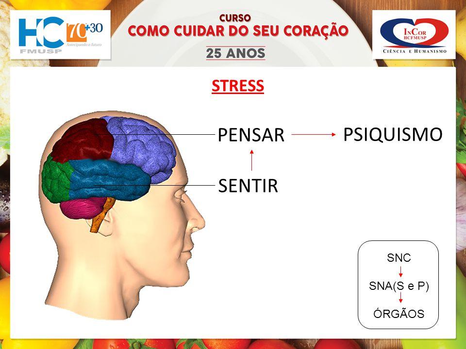 STRESS PENSAR PSIQUISMO SENTIR SNC SNA(S e P) ÓRGÃOS