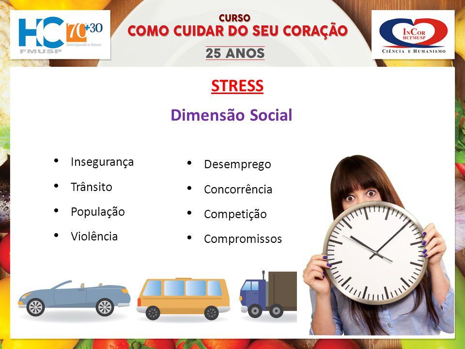 STRESS Dimensão Social Insegurança Desemprego Trânsito Concorrência