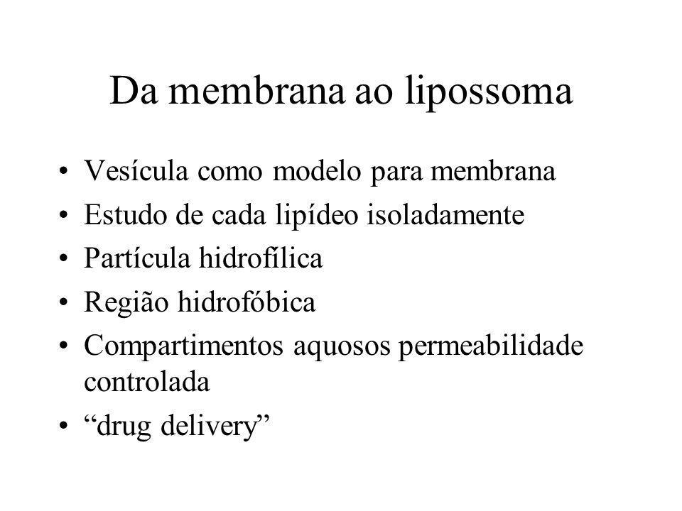 Da membrana ao lipossoma