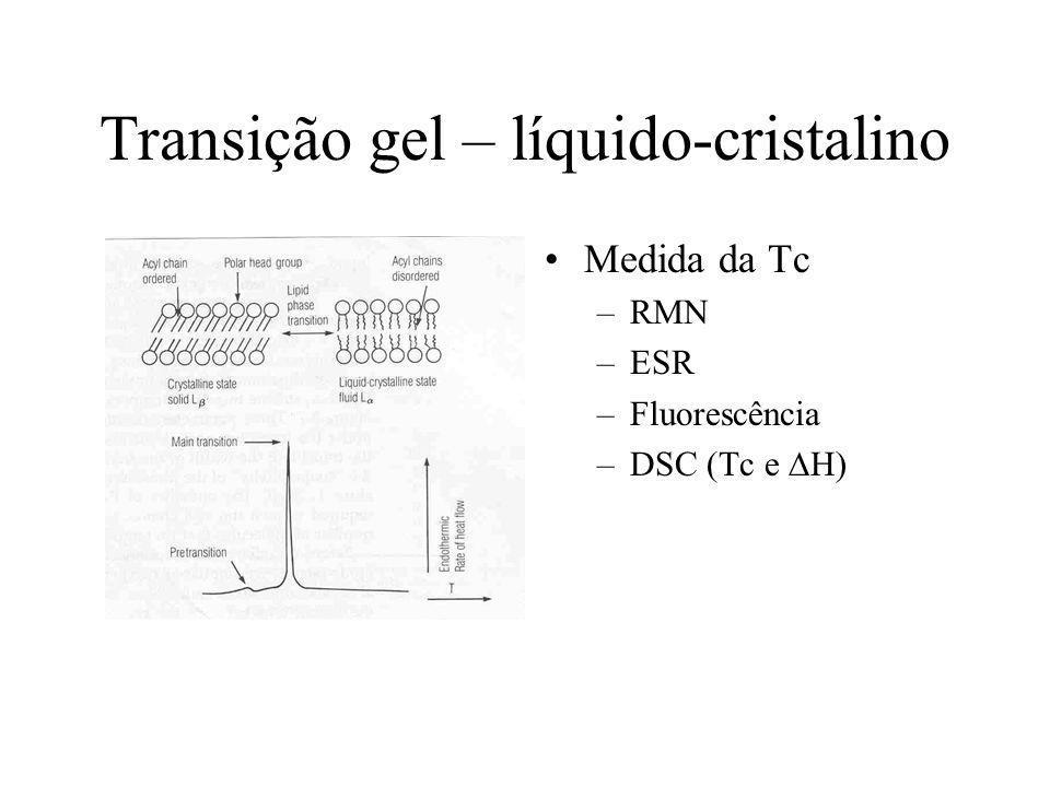 Transição gel – líquido-cristalino