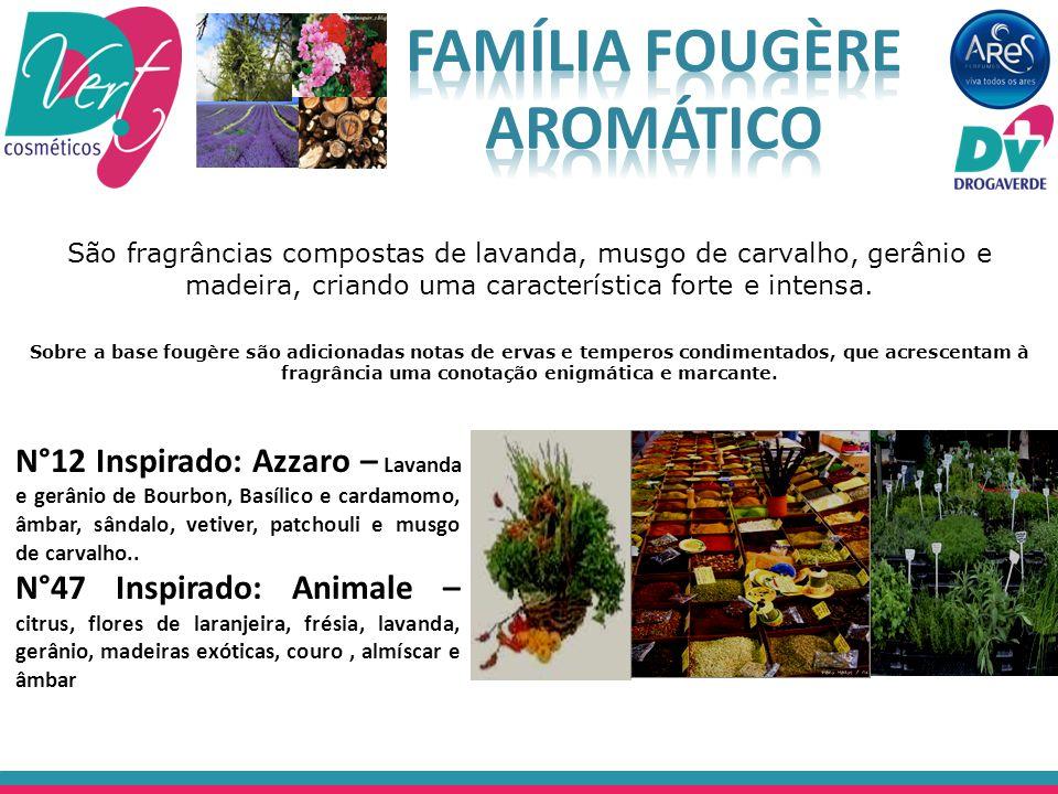Família Fougère Aromático